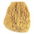 Natural Grass Sponge